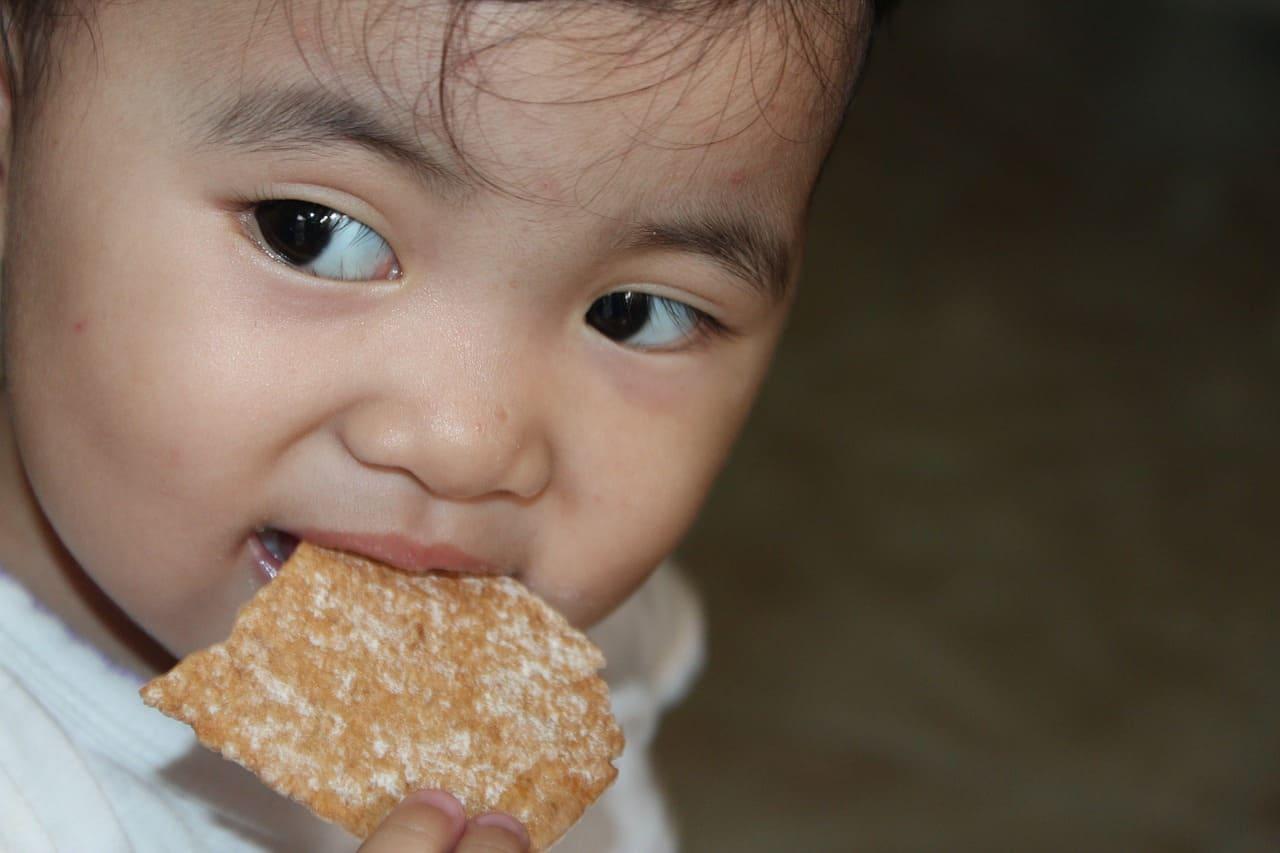 boudoirs bébé bouche goût pratique gâteaux enfants accessoires bébés goûter morceaux fondent